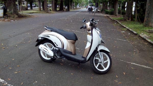 Honda Scoopy (gambar dari internet)